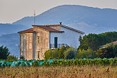 Scenic view of typical Italian farmhouse with vineyard field against mountain in sunset light