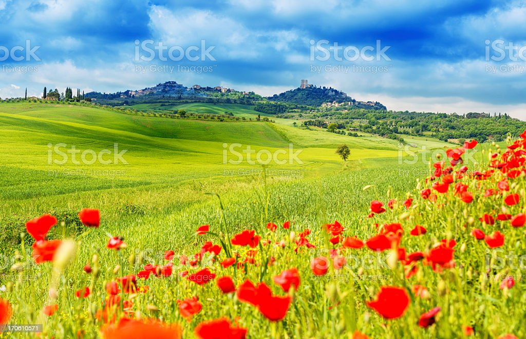 Typical landscape of Tuscany stock photo