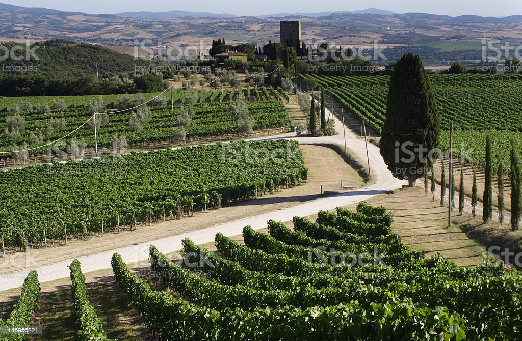 Typical landscape of Tuscany with castle royalty-free stock photo