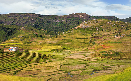 istock Typical Madagascar landscape - green and yellow rice terrace fields on small hills with clay houses in Andringitra region near Sendrisoa 1227171626