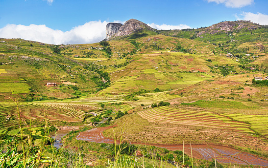 istock Typical Madagascar landscape - green and yellow rice terrace fields on small hills with clay houses in Andringitra region near Sendrisoa 1254960004