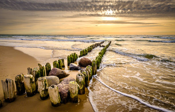 typical mole at the northsea typical mole at the northsea - sylt groyne stock pictures, royalty-free photos & images