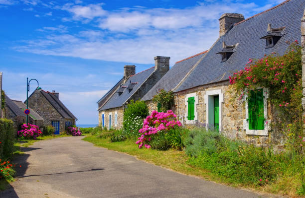 typische alte Haus und Hortensie Blume in der Bretagne, Frankreich – Foto