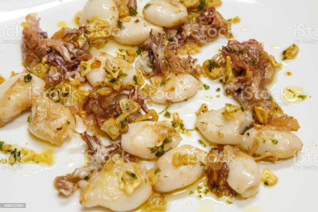 typical plate from Spain. calamar a la plancha. Small squid or calamari served on plate. Gourmet food stock photo