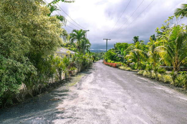 Typical rural road on Upolu Island, Samoa, South Pacific with lush foliage, plants and gardens stock photo
