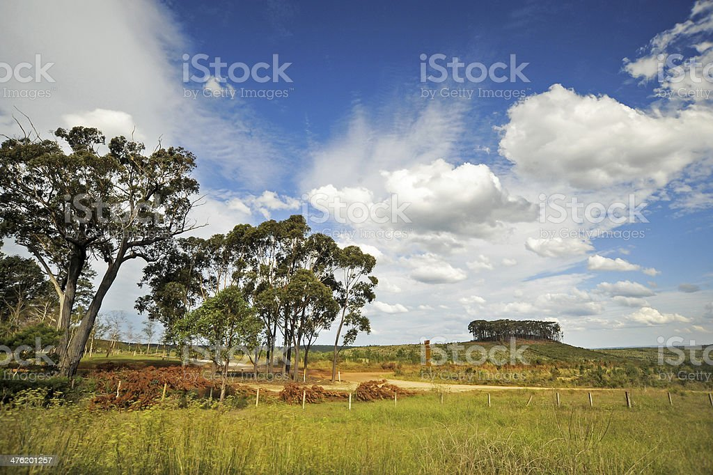 typical rural scenery in Australia, with beautiful clouds royalty-free stock photo