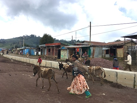 Typical street scene with donkeys in poor northern Ethiopian town
