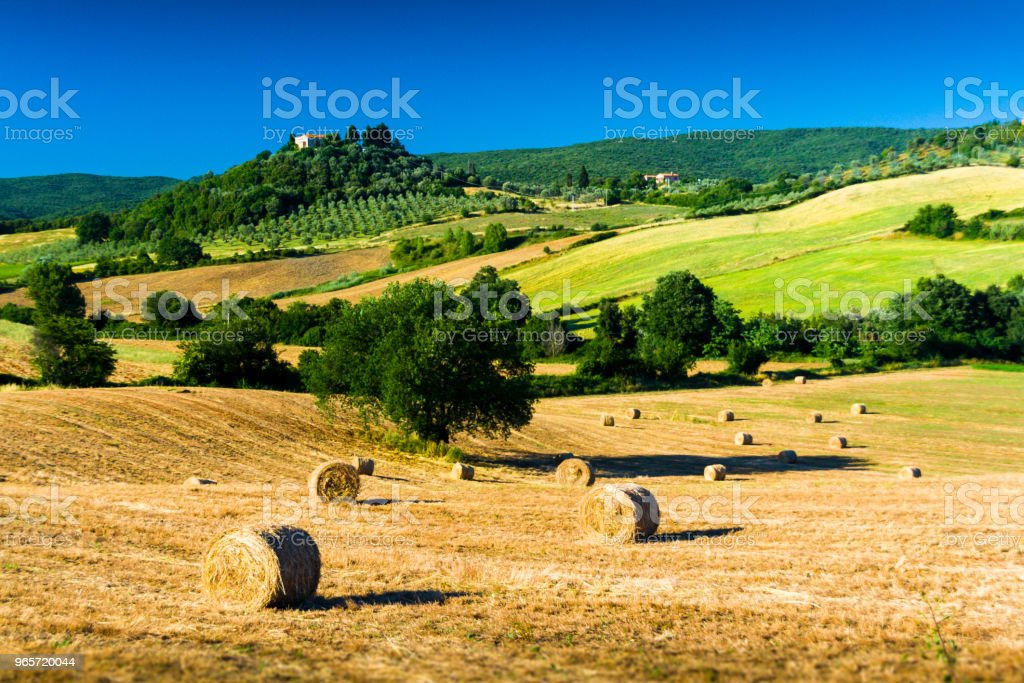 Typical tuscan country panorama near Massa Marittima (GR), Italy - Стоковые фото Возвышенность роялти-фри