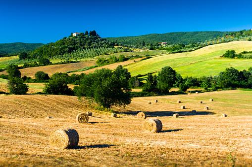 Typical Tuscan Country Panorama Near Massa Marittima Italy — стоковые фотографии и другие картинки Возвышенность