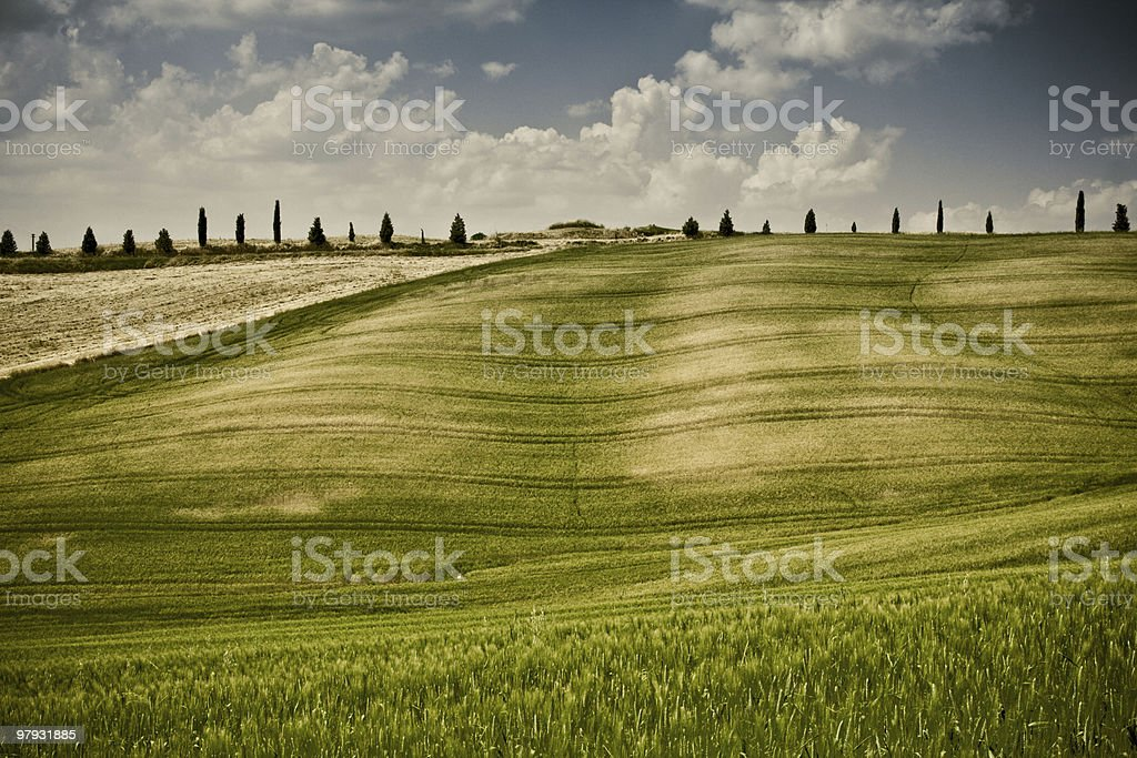 Typical Tuscan landscape royalty-free stock photo