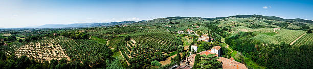 typical Tuscany landscape  hills and fields - panoramic Vinci foto