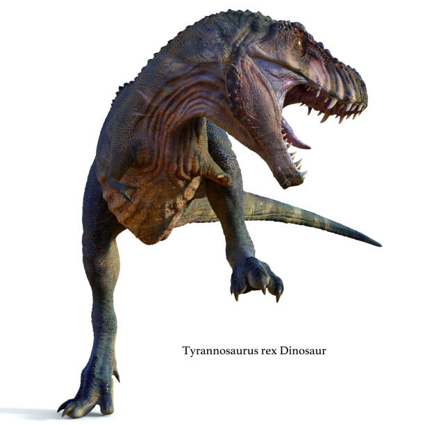 Tyrannosaurus Male Dinosaur with Font stock photo