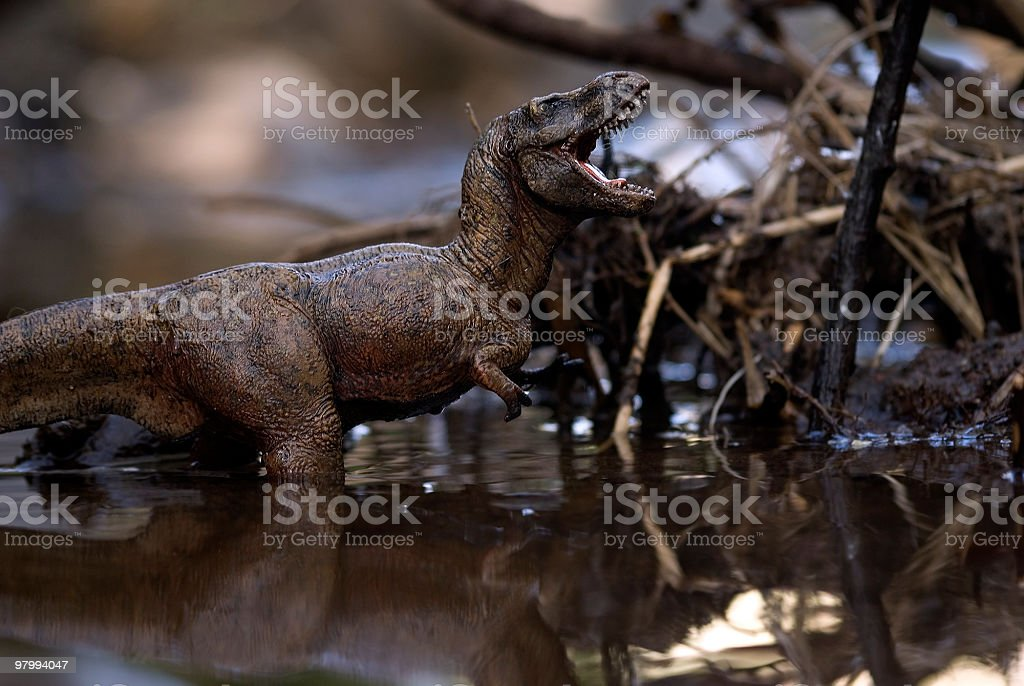 Tyrannosaurus royalty-free stock photo