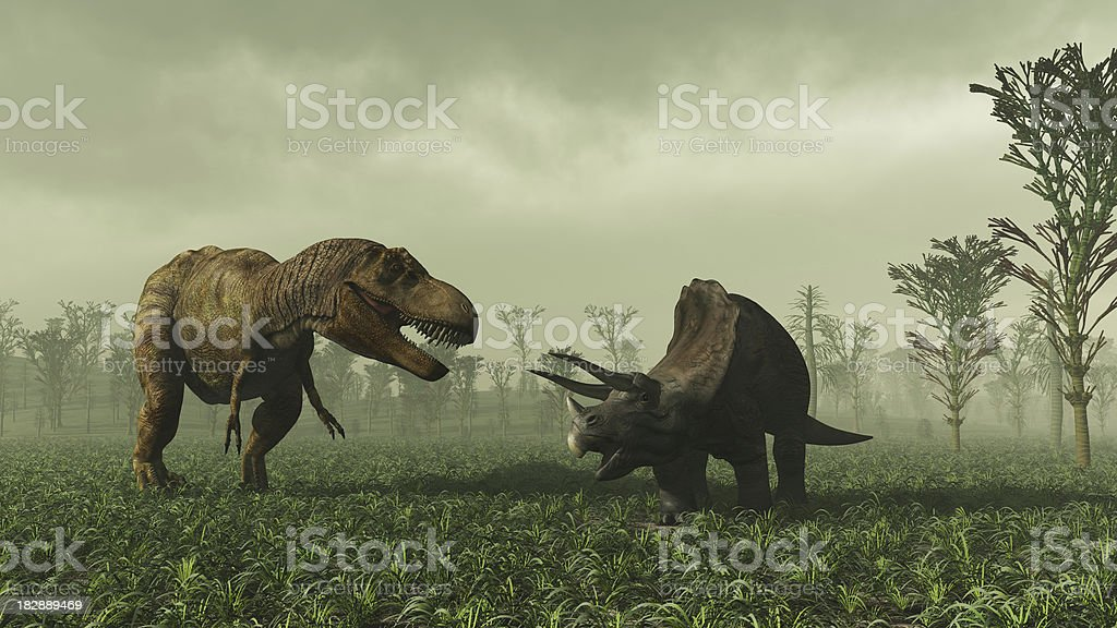 Tyrannosaurus Rex And Triceratops royalty-free stock photo