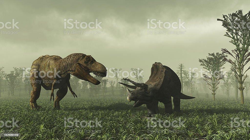 ティラノサウルスレックスと Triceratops ストックフォト