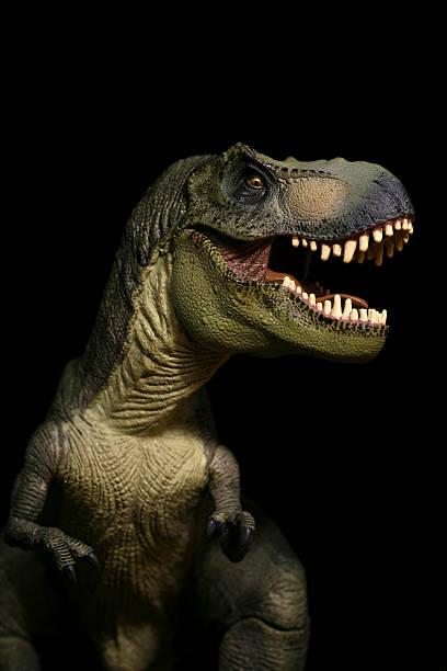 Tyrannosaurus Rex plastic model portrait roaring stock photo