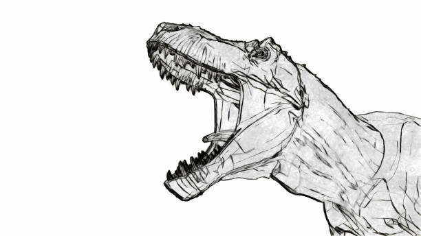 tyrannosaurus rex roar - pencil drawing stock pictures, royalty-free photos & images