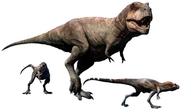 tyrannosaurus rex mit nachwuchs - dinosaurier illustration stock-fotos und bilder