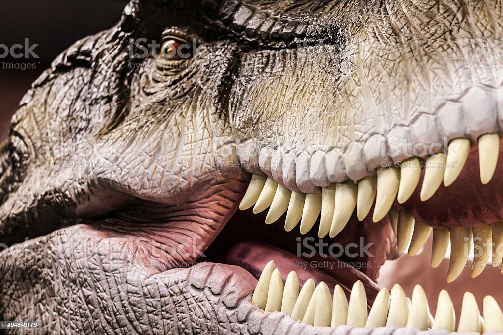Tyrannosaurus showing his toothy mouth stock photo