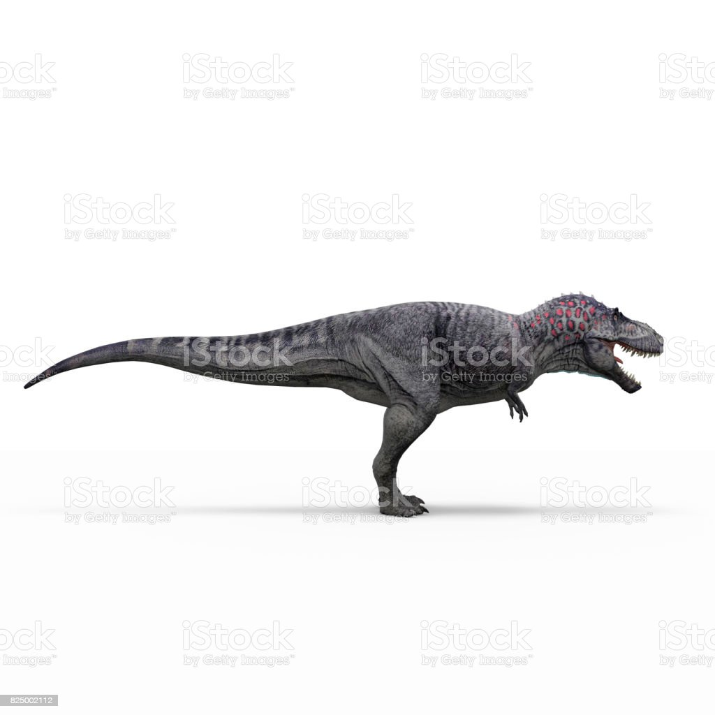 tyranosaur on white background isolated 3d rendering stock photo