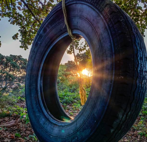 Tyre Swing stock photo