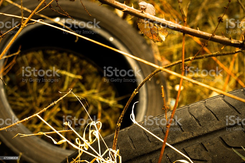 Tyres Dumped in a Bush   Stock image stock photo