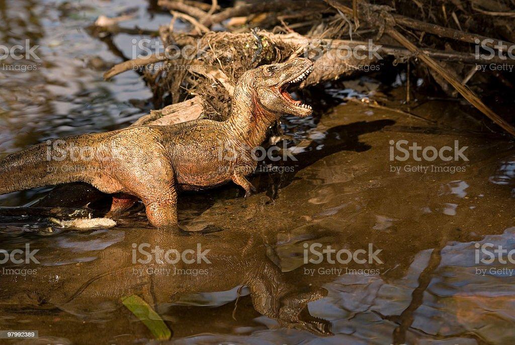Tyrnnosaurus Rex royalty-free stock photo