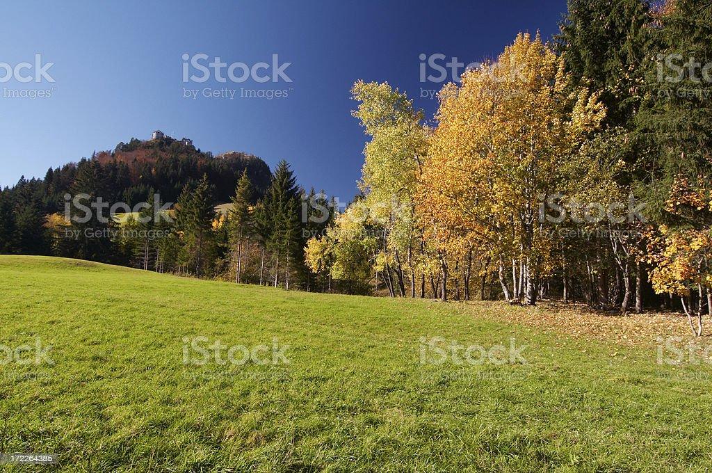 tyrolean autumn tree royalty-free stock photo