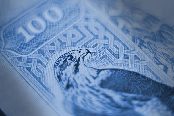 uae dirhams closeup stock photo