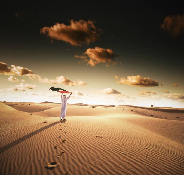 烏埃國慶日在沙漠中 - uae national day 個照片及圖片檔
