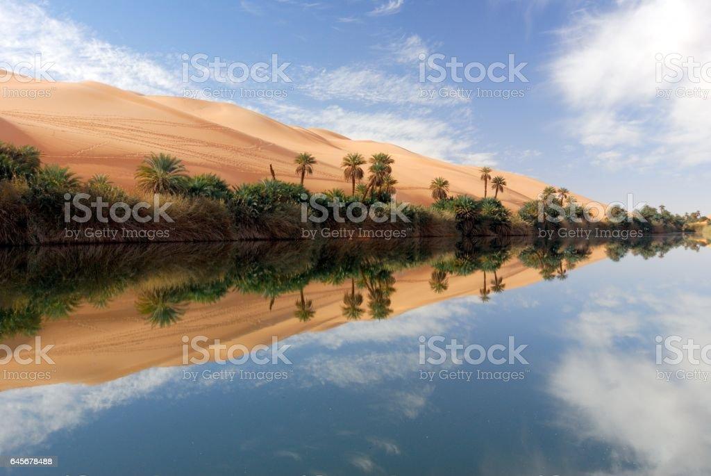 Ubari Oasis, Fezzan, Libya - Photo