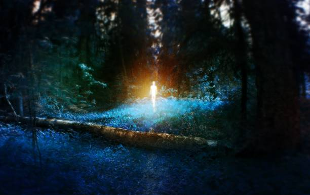 ufo, magic blue forest with fallen birch log with age, with the figure in the middle, monster, mystic fairy tale concept, wallpaper - foto de acervo
