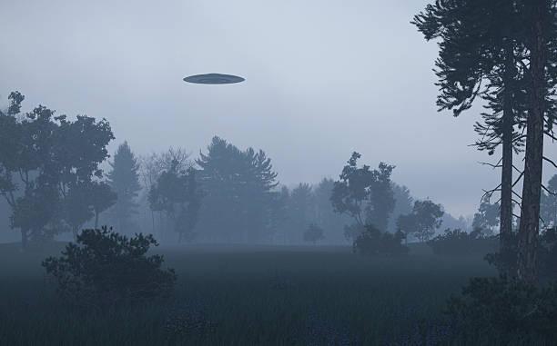 ufo over trees - ufo stockfoto's en -beelden