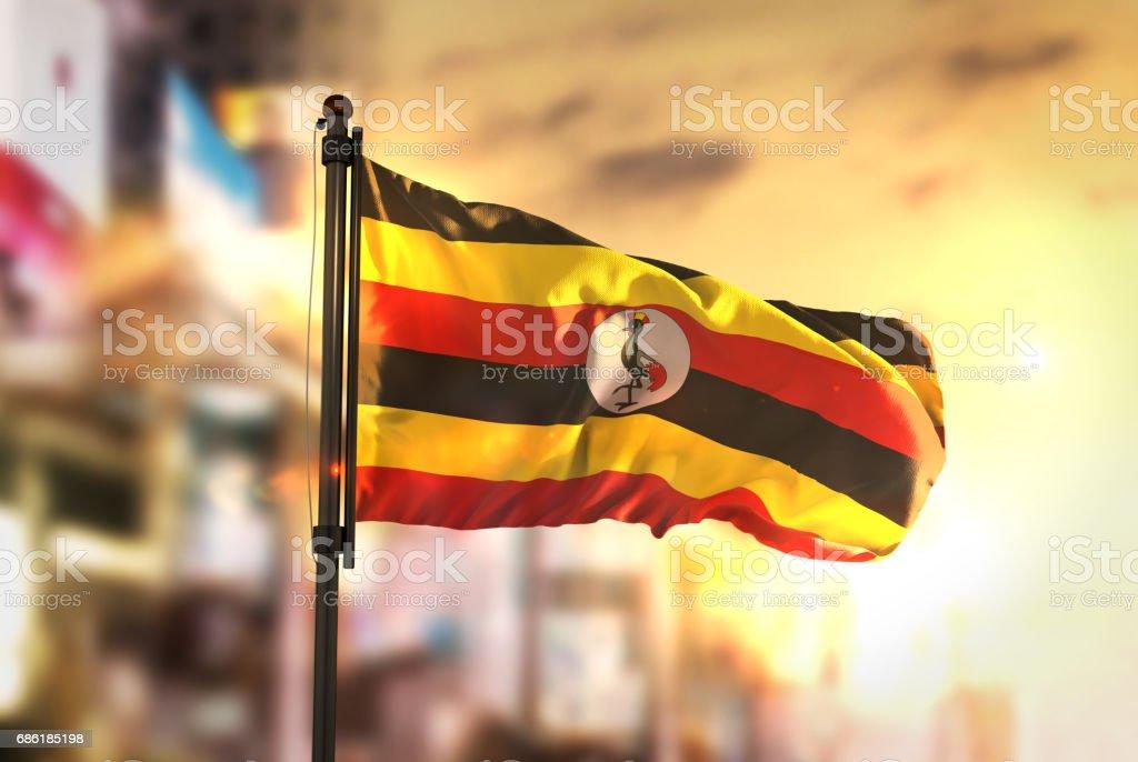 Uganda Flag Against City Blurred Background At Sunrise Backlight stock photo
