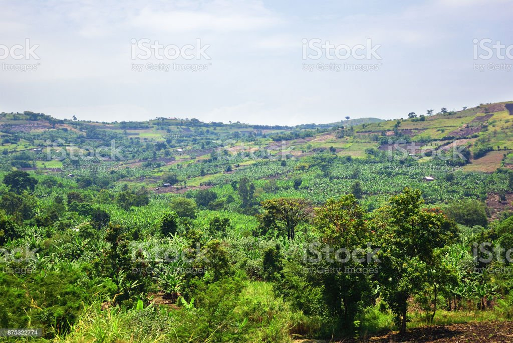 Uganda rural landscape, Africa stock photo