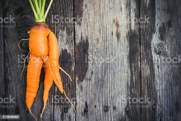 Ugly Carrot On Barn Wood Stock Photo - Download Image Now