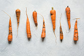 Ugly organic carrot eaten by pests, spoiled, improperly grownon light. Space for text. Concept natural vegetables. Protect from pests of garden.