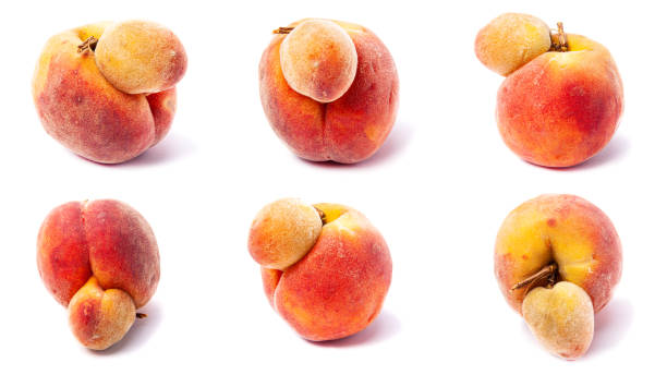 ugly peach set - disfigure stock pictures, royalty-free photos & images