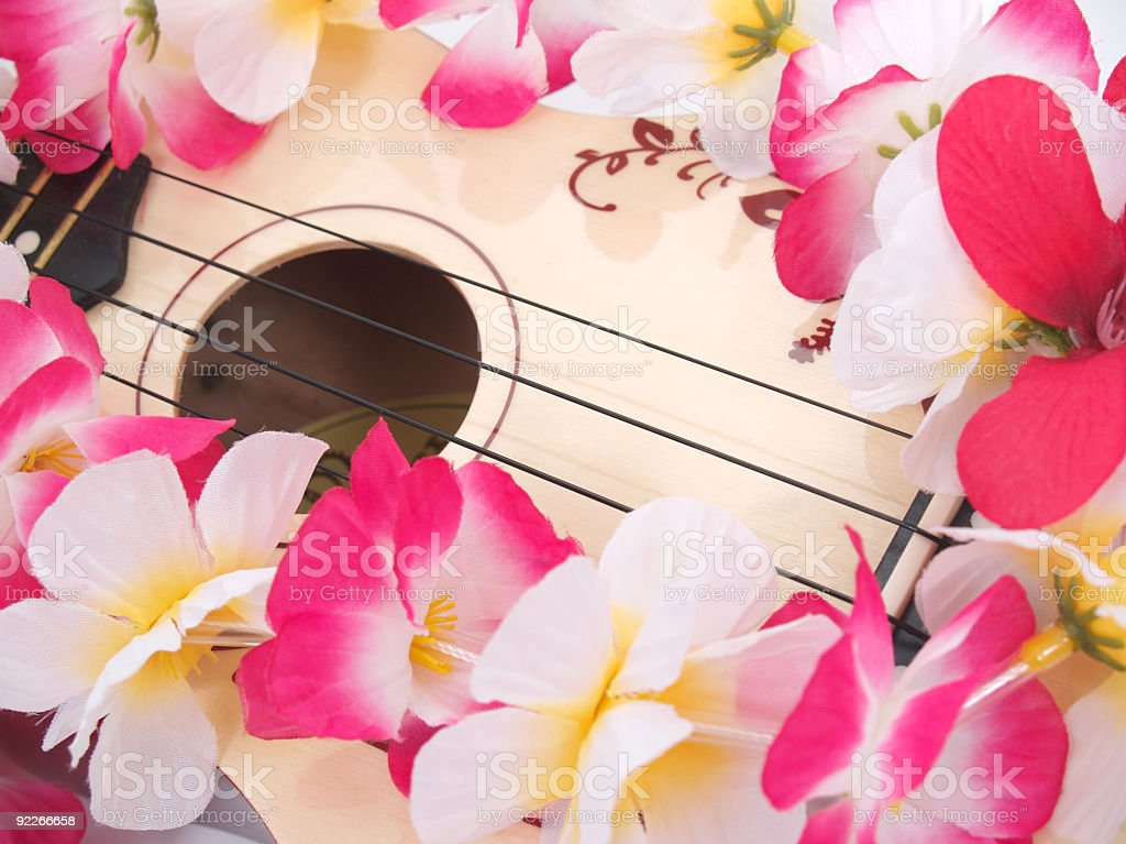 Ukelele hawaii theme stock photo