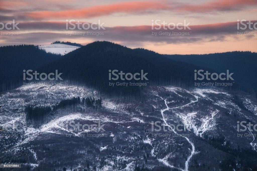Ukraine. Zakarpatsky region. Evening slopes at Kozmeschika stock photo