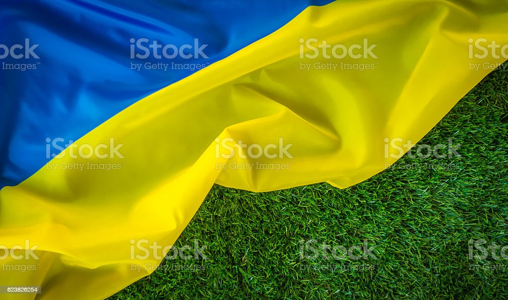 Ukrainian flag on green grass stock photo
