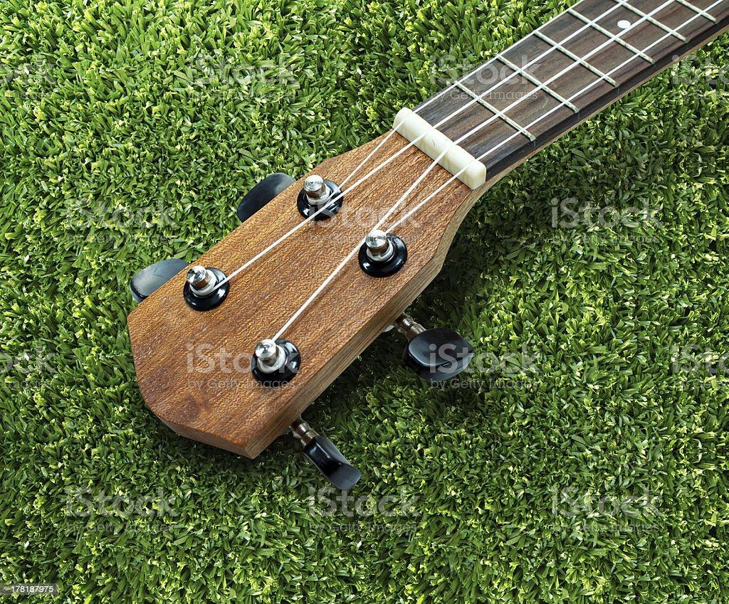 Ukulele guitar on lawn background royalty-free stock photo