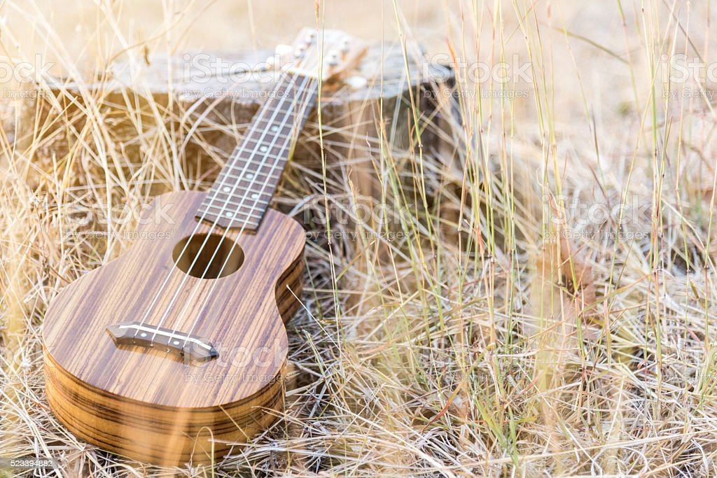 ukulele in vintage style stock photo