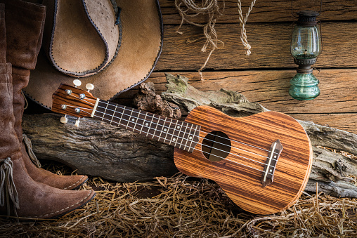 istock ukulele on cowboy hat and traditional leather boots 522792986
