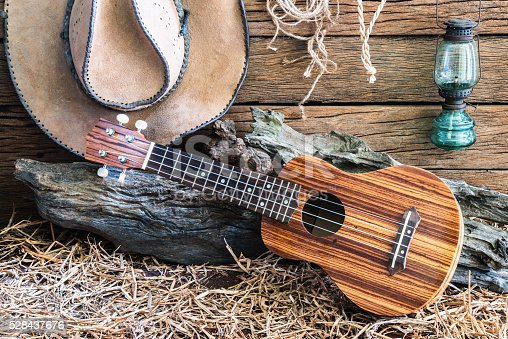 istock ukulele with cowboy hat on barn background 528437676