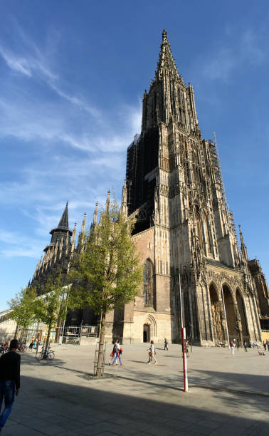Ulm Minster - The tallest church in the world Ulmer Münster ulm minster stock pictures, royalty-free photos & images