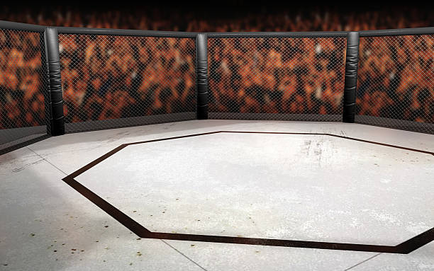 Ultimate Fighting Octagon Illustration stock photo