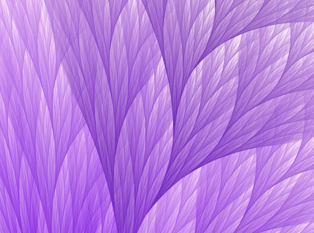 Ultra violet coral tree fractal pattern purple white background picture id1132873698?b=1&k=6&m=1132873698&s=612x612&w=0&h=hxeef2dllrmvnmgea8ox wuynui9 komo9rukkly1is=