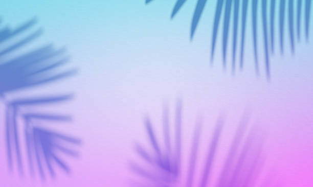 ultra violet gradiented background with palm shadows. - vaporwave foto e immagini stock