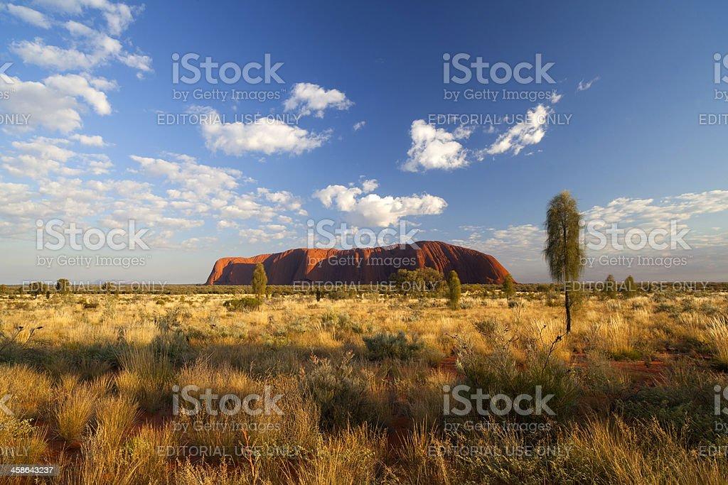 Uluru Landscape stock photo